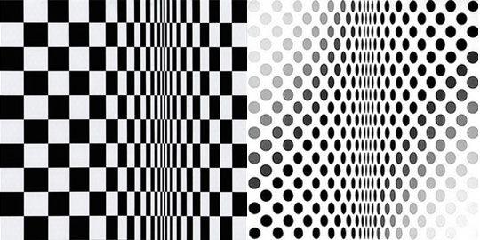 Bridget Riley6